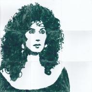 Fliesen: Cher, Musikerin